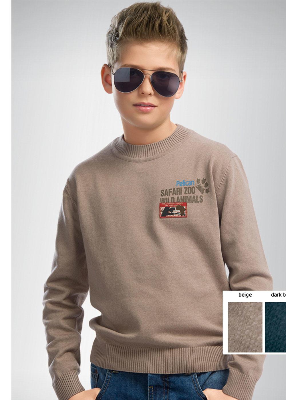 Подростковые Джемпера Для Мальчиков